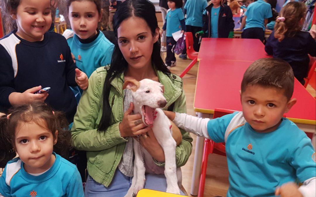 Día de la mascota en Infantil